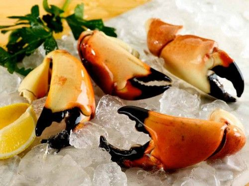The Most Wonderful Time of the Year-Stone Crab Season!
